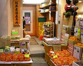 桜井農園1